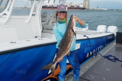 cobia-fishing