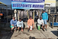 Grouper Fishing Charters