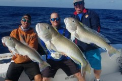 Group Deep Sea Fishing Trip