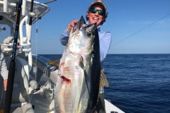 yellowfin-tuna-